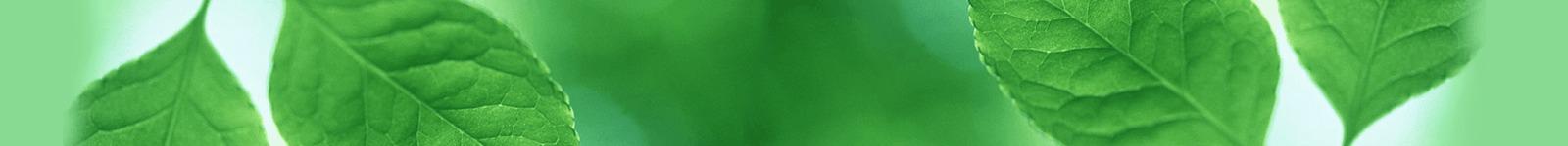 aku-zone grøn
